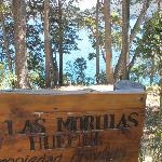 Photo of Las Morillas Huemul Lodge