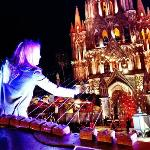 Earth Harp photo by Rich Van Every