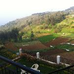 View#2 - Mount n Mist