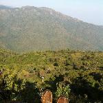 View#4 - Trekking