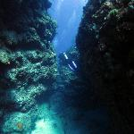typical canyon through reef