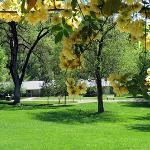 Beautiful Vichy Springs