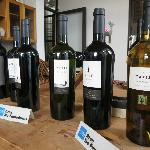 some of the wines on offer