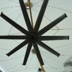 The Big Fan