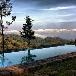 Swimming Pool View at Wild Elephant Resort, Munnar