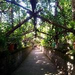 Photo de Garden House Sorrento