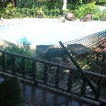 Piscine vue du hamac