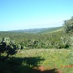 View of Majiki Land