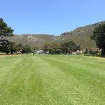 Hermanus golf