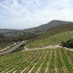 Wine lands, Hemel en Aarde