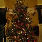 Christmas at Bella!