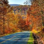 Blue Ridge Parkway ~ practically our backyard