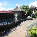 la piscine en pierres trés baroque