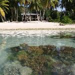 Looking back at Amuri Sands from the lagoon. The water is so clear you can see the fish in the w
