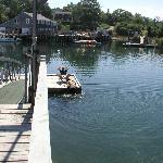 Fun on the dock