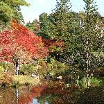 (参考)円成寺の庭園