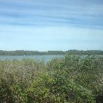 This is the view from our site at Lakeside Tourist Park in Robe.