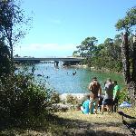 Crayfish Creek High tide