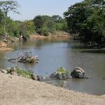 Rio Grumeti