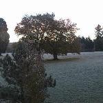 A crisp November morning