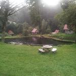 Foto de Truchas Selva Madre Costa Rica