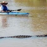 WildNative Delta Safaris Foto