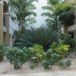 Gardens between adjacent wings in our block of rooms