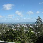 A view from Mount Eden