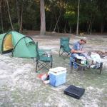camping at ferns