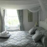 The bedroom and window
