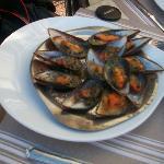 Photo de Restaurant L'Hippocampe Vieux Port