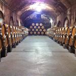 Stone Hill Winery Cellar