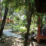 il giardino dei bungalow