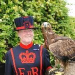 Raven Master from the Tower of London with Khan our Golden Eagle x Russian Steppe Eagle