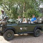 Safari from Kambaku Lodge