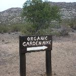 Organic Breakfast Hike - hills of Tecate