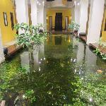 fish pond at 1st floor