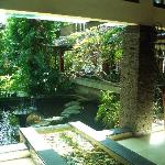 Pond view from lobby