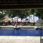 So so 1/4 Olmypic Size Pool