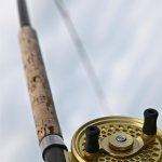 Van Isle Fishing and Marine Adventures
