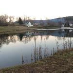 Walk Around The Pond -- Behind The Main Inn and Cabin Lodge