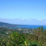 Ausblick von der Terrasse auf Port Antonio