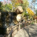 Walkway in Zoo