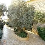Kempinski Ishtar Hotel Dead Sea-Jordan