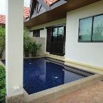 Mini pond/pool