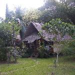 Cabin No. 3