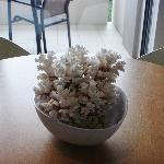 Dining table coral arrangement