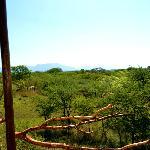 Aussicht hintere Terrasse