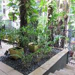 The Villa's gardens