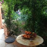 Un petit coin de jardin en automne ...